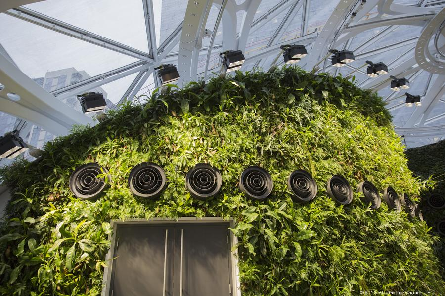 LED Grow Lights for Indoor Growers